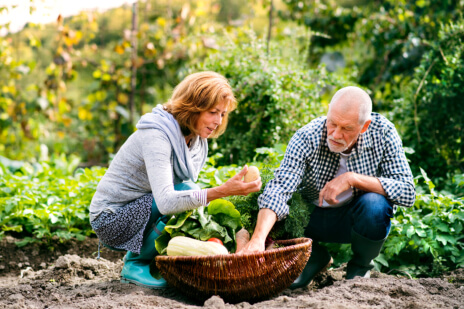 Outdoor Activities Fit for Seniors